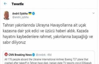 Ukrayna Büyükelçisinden uçak kazasına ilişkin...