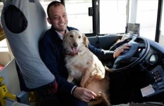 Üşüdüğü için otobüse binen köpeği 1,5 saat...