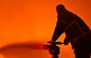 Adana'daki pamuk yağı fabrikası yangını...