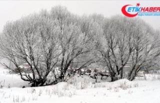 Ardahan'ın Göle ilçesi eksi 39 dereceyi gördü