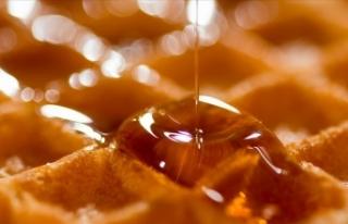 Türkiye'de geçen yıl 109 bin ton bal üretildi