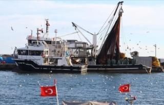 Marmara'da umduğunu bulamayan balıkçılar...