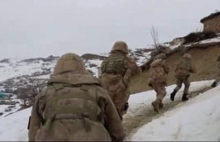Siirt'te terör örgütü PKK'ya yardım eden...