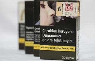 Tarım ve Orman Bakanı Pakdemirli: Sigarada düz...