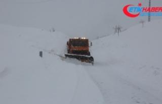 Tunceli'de kar: 155 köy yolu ulaşıma kapandı