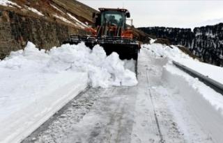 Doğu Anadolu'da kar ve tipi nedeniyle 98 köy...