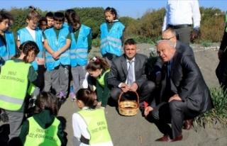 Mersin'de nesli tükenme tehlikesi bulunan 'kum...