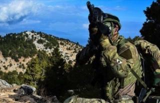 Barış Pınarı bölgesi güneyinde 10 terörist...