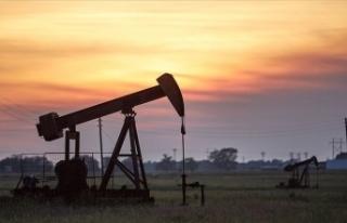 Brent petrolün varili 22,03 dolar