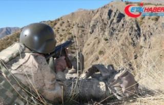 İçişleri Bakanlığı: PKK'nın sözde Çemçe...