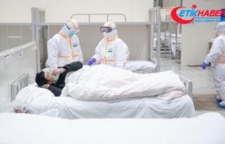 Japonya'da 25 kişi daha korona virüsüne yenik...