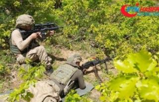 Bitlis'te terör operasyonunda bulunan 32 odalı...