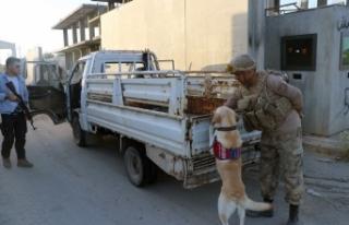 Telabyad ve Resulayn'da drone ve bomba arama köpeği...