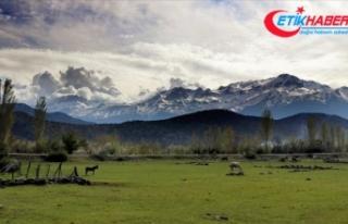 Toros Dağları'nın eteklerinde bahar, yüksek...