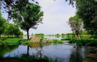 10 millet bahçesi daha açılıyor