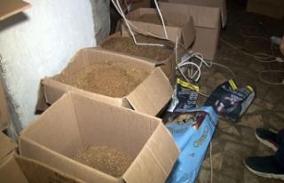 Bahçelievler'de kaçak tütün imalathanesine...
