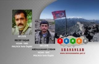 Bitlis'te etkisiz hale getirilen teröristlerin...