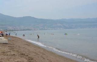 Bursa sahillerinde alınan ilk tur numune sonuçları...