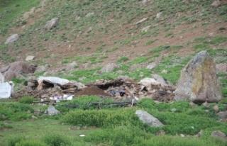 Depremde Mehmetçik yaylaya ulaşıp, yaralıları...