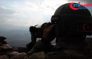 MSB: 2 PKK'lı terörist güvenlik güçlerine...