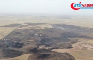 PKK/YPG Suriye'nin kuzeyinde tarlaları ateşe...