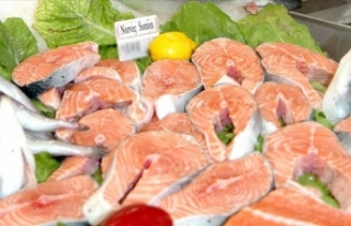 Prof. Dr. Tanrıkul: Somon balığının Kovid-19...