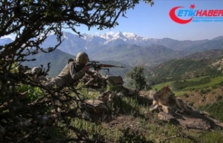 Şırnak ve Elazığ'da 4 terörist etkisiz hale...