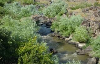 Gaziantep'teki 2 bin yıllık taş köprü turizme...
