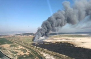 İzmir Kuş Cenneti yakınında korkutan yangın