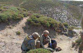 Siirt'te öldürülen PKK'lı 2 teröriste ait...