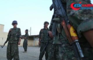 YPG/PKK'lı teröristler Suriye'de kız...