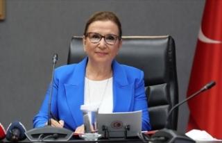 Bakan Pekcan: Türkiye'nin e-ticaret hacmi yılın...