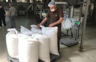 FİSKOBİRLİK, 2020 ürünü fındık alımına başladı