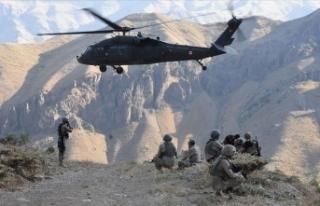 İlkbahar-yaz operasyonlarında 115 terörist etkisiz...