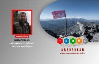 MİT'ten eylem hazırlığındaki PKK'ya...