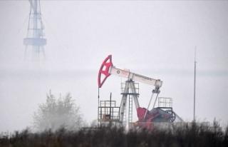 Rusya'nın petrol geliri yaklaşık yüzde 35...