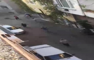Sokakta top oynayan çocukları önce dövdü sonra...