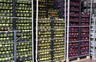 Tarım ürünleri ihracatı Kovid-19'a rağmen...
