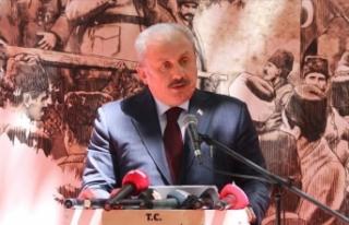 TBMM Başkanı Şentop: Dünyada insan haklarından,...