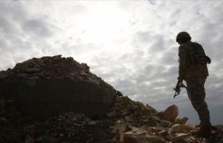 Van'da jandarmanın ikna ettiği PKK'lı...