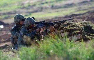 Zeytin Dalı bölgesinde 10 PKK/YPG'li terörist...
