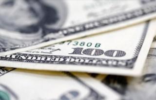 Dolar/TL, 8,02 seviyesinden işlem görüyor
