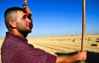 Doğu Anadolu'da sıcaklık artacak