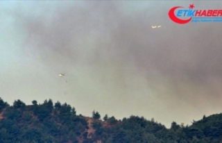Hatay'daki orman yangınına havadan müdahale...