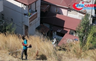 Kocaeli'de evleri akrep ve yılanlar bastı