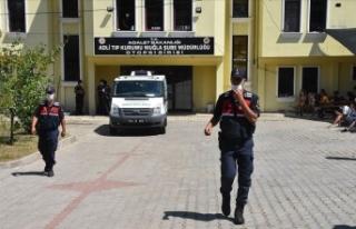 Pınar Gültekin cinayetine ilişkin otopsi raporu...