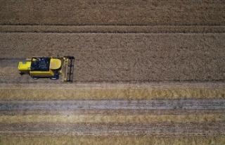 Tarımsal Girdi Fiyat Endeksi temmuzda arttı