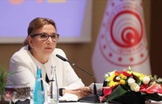 Ticaret Bakanı Pekcan: Türkiye Akdeniz'deki...