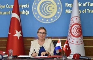 Ticaret Bakanı Pekcan: 'Türkiye'de doğrudan...