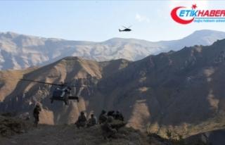 Yıldırım-2 Cilo Operasyonu'nda 3 terörist...